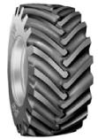 Xcel_Tyre_650